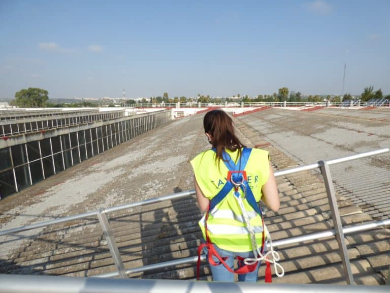 Roof and Structure Pathologies at Airbus